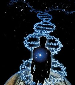 Your DNA Can Reach to the Sun and back