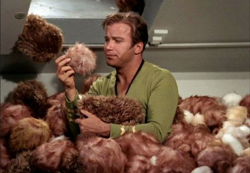 tribble asexual reproduction star trek